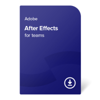 Adobe After Effects for teams (EN) – 1 година