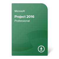 Project 2016 Professional
