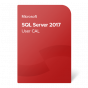 product-img-SQL-Server-2017-User-CAL@0.5x