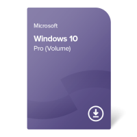 Windows 10 Pro (Volume)