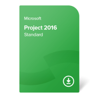 Project 2016 Standard