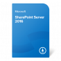 product-img-SharePoint-Server-2016@0.5x