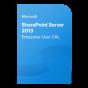product-img-SharePoint-Server-2013-Enterprise-User-CAL@0.5x