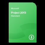 Project 2013 Standard