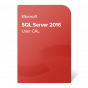 product-img-SQL-Server-2016-User-CAL@0.5x